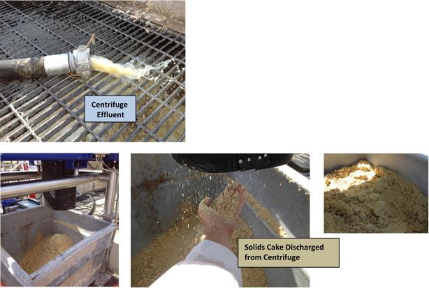 Photo of potato processing effluent, 3 photos of solids cake
