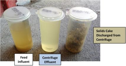 Potato processing samples: feed influent, centrifuge effluent, solids cake