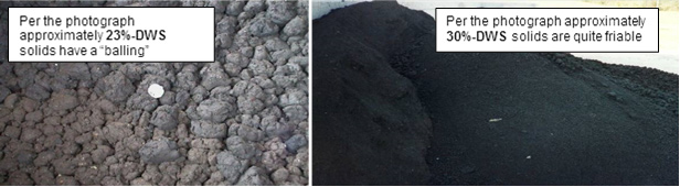 Comparison photo of dewatered solids at different DWS